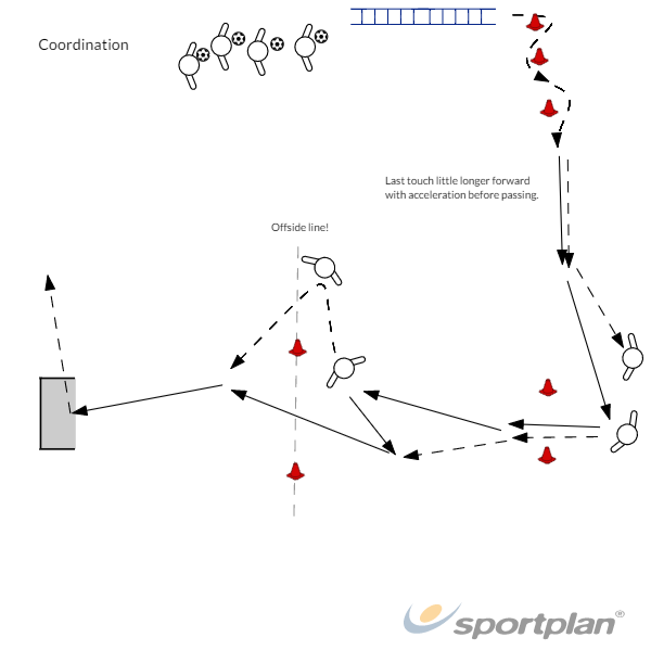Coordination ledder with balls 2Co ordinationFootball Drills Coaching