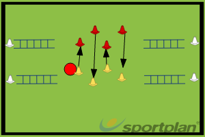 Exercise 1# Agility Ladder RushAgility Ladder RelayAgility & Running SkillsRugby Drills Coaching
