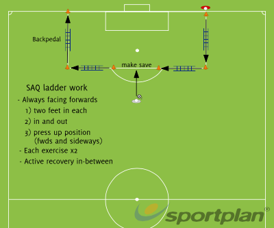 SAQ goalie specificFootball Drills Coaching