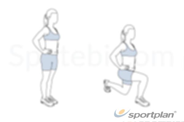 StretchesGymnastics Drills Coaching