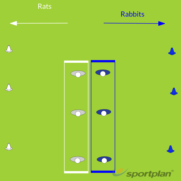 Copy of Rats and RabbitsWarm UpRugby Drills Coaching