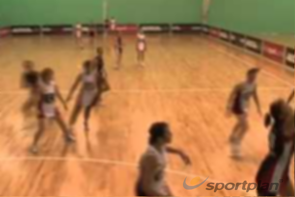 Job Roles: GOAL SHOOTER- IntosportRoles & responsibilitiesNetball Drills Coaching