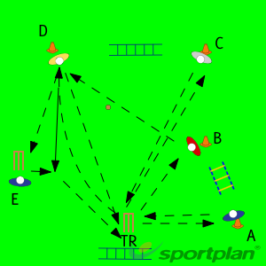 Team Drill 2Ground fielding and throwingCricket Drills Coaching