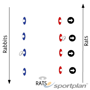 Rats and RabbitsRugby Drills Coaching