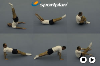 : Body conditioning sequence - Key 2 Body Condition Linkage